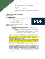 Dret Processal Laboral II