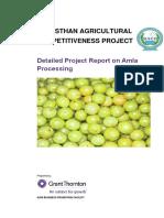 RACP_ABPF_Tech DPR_Amla processing_Project_Report.pdf
