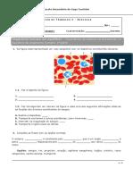Ficha Trabalho 5 Sistema Circulatório