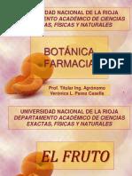 CLASE  FRUTO .pdf