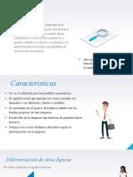 tipos de empresa en el Perú