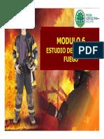 MODULO 6 CARGA DE FUEGO.pdf