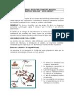 Clase 4. Poblacion y Migracion.docx