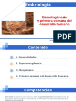 1. GAMETOGÉNESIS Y PRIMERA SEMANA DE DESARROLLO