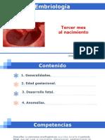 4. TERCER MES AL NACIMIENTO.pdf