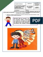 Guía N° 6 LOS SITEMAS DEL CUERPO