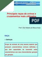 Principais raças de ovinos e cruzamentos mais utilizados.pdf