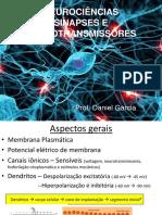 NEUROCIÊNCIAS Sinapse