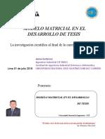Modelo Matricial en el Desarrollo de Tesis UNI julio 2016.ppt