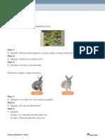 FICHA SOLUCIONARIO.pdf