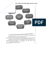 Elementele Specifice Identificării Vizuale