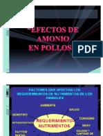 EFECTO DEL AMONIO EN POLLOS Por