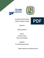 ANALISIS ERGONOMICO (PROYECTO).docx