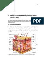 basic brain anatomy and physiology.pdf