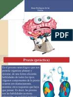 _BB_DE_LAS_PRAXIAS