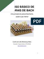curso florais 2020_formatado.pdf