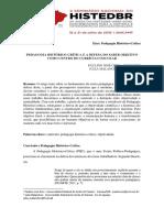 Artigo_Malanchen_Orso_Currículo