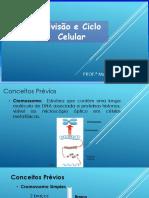 Divisoeciclocelularmitoseemeiose_20191017213156