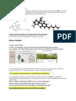 AMIS SPORTIFS (1).pdf