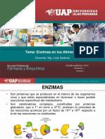 3)Enzimas.pdf