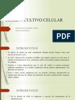 Clase 5 Cultvo Celular Con Notas