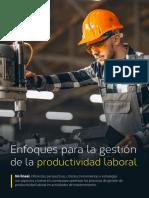 Enfoques para la gestión de la Productividad Laboral_P21E29