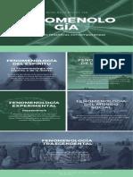 Infografia fenomenología