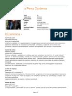 Cv_wendy_vanessa_perez_cardenas.pdf