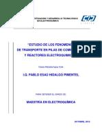 Estudio de los fenomenos de transporte en pilas de combustible y reactores electroquímicos.