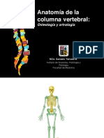 Columna-Vertebral-Osteo-y-artro-