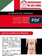 ELIMINACION URINARIA.pptx