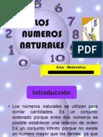 1.Numero Naturales 6