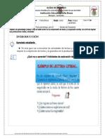 Silueta textual Guía Caña BravaSEXTO