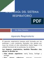 4.- clase Anatomía del sistema respiratorio.pdf