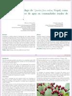 extraccic3b3n-de-mucc3adlago-de-opuntia-ficus-indica