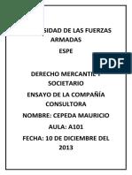 COMPAÑIAS CONSULTORAS