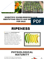 418146111-KNOWLEDGE-SKILLS-IN-IDENTIFYING-FRUITS-SEEDLINGS-FOR-SALE.pptx