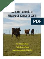 manejo-de-bovinos-de-corte