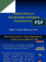 alimentos-mopatogenos-112-111119203105-phpapp01