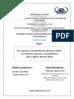 DEA_DROIT_PUBLIC_FONDAM_Memoire_CAE.pdf