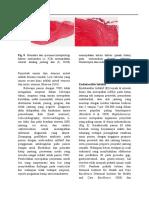 Halaman 96-117