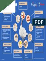 HE05 Managing Bird Welfare _RUS.pdf