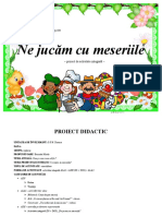 proiect_mirela.doc