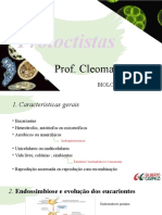 Protoctistas