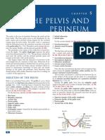 chapter05_ThePelvis&Perineum_96_121.pdf