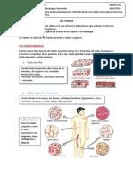 LOSTEJIDOS.pdf