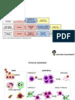 Aula 6 -Apresentação de antígenos