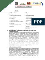 PLAN DE TRABAJO REMOTO (01-05-2020) AL (31-05-2020) - MAYO