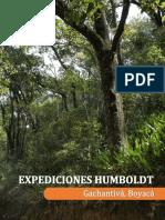 2017-Cordoba-Borja-Medina-Gachantiva.pdf