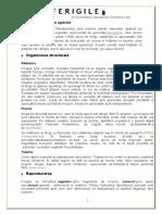 Ferigile-1.docx corectate